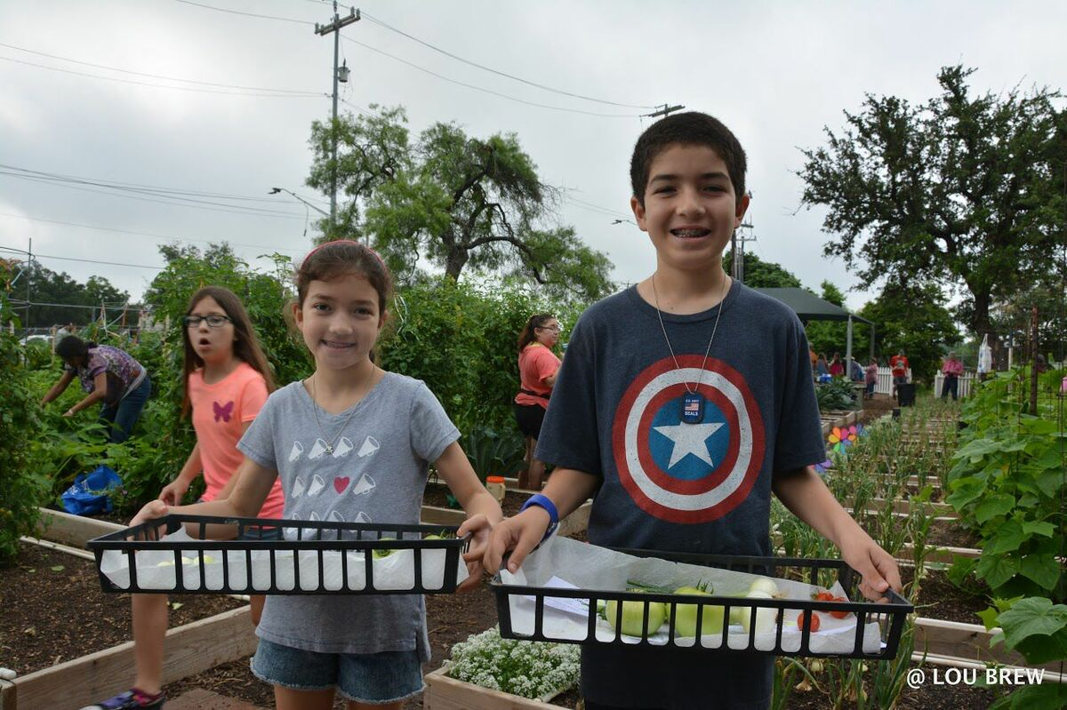 youth gardens program urban program bexar county