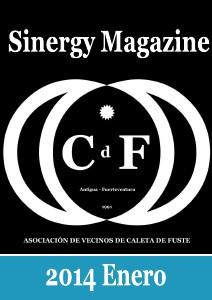 Sinergy Magazine Enero 2014