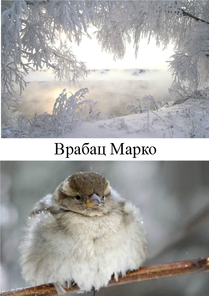 Predmet Čuvari prirode Фебруар 2014.
