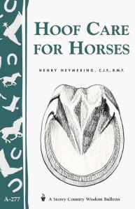 Άλογα - Donkeys Ιούν. 2014