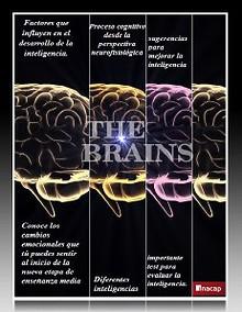 Revista de Inteligencia