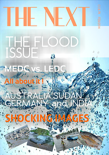 THE FLOOD ISSUE