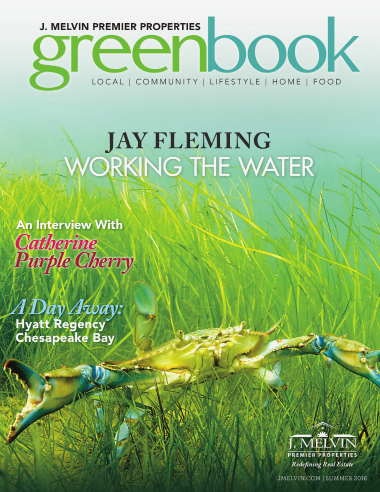 Greenbook: A Local Guide to Chesapeake Living - Issue 8