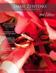 2014 Wedding Client Guide