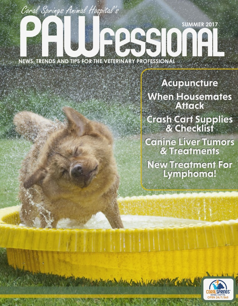 Coral Springs Animal Hospital's Pawfessional PAWfessional Summer 2017