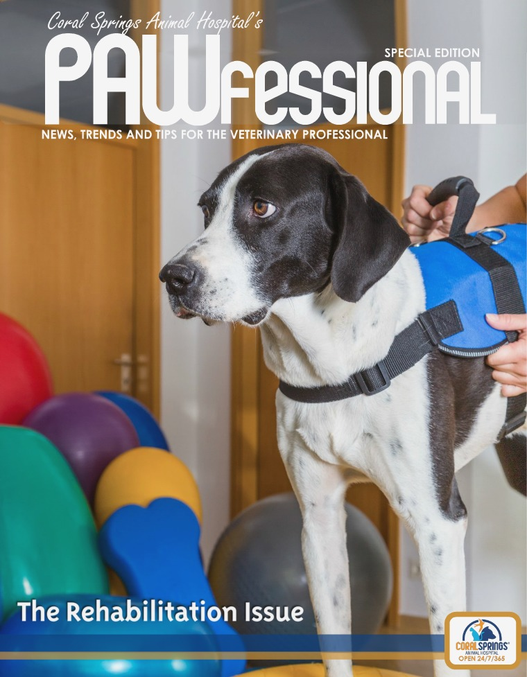 Coral Springs Animal Hospital's Pawfessional PAWfessional Rehab Issue 2017
