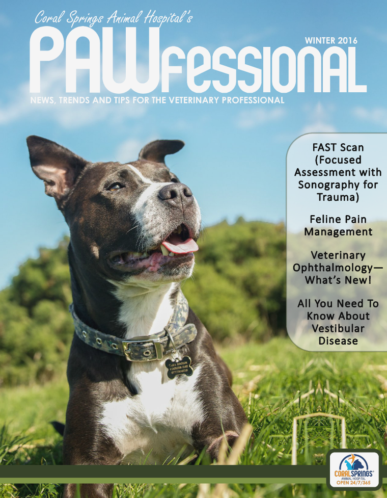 Coral Springs Animal Hospital's Pawfessional Winter 2016