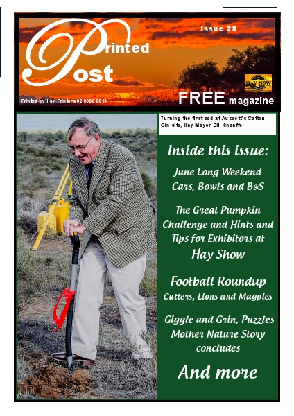 Printed Post Issue 28