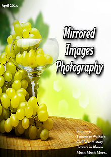 Mirrored Images Photogrpahy