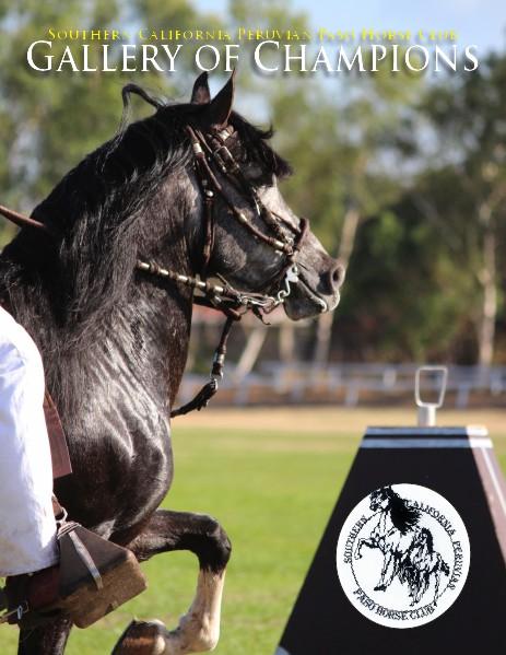 Southern California Peruvian Paso Horse Club Jun. 2014