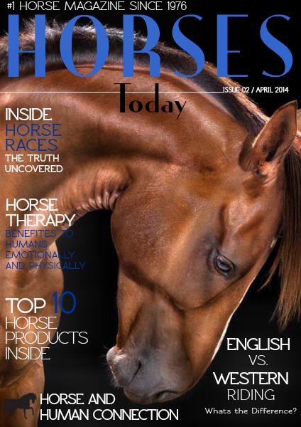 Horses Today Human and Horse Connection