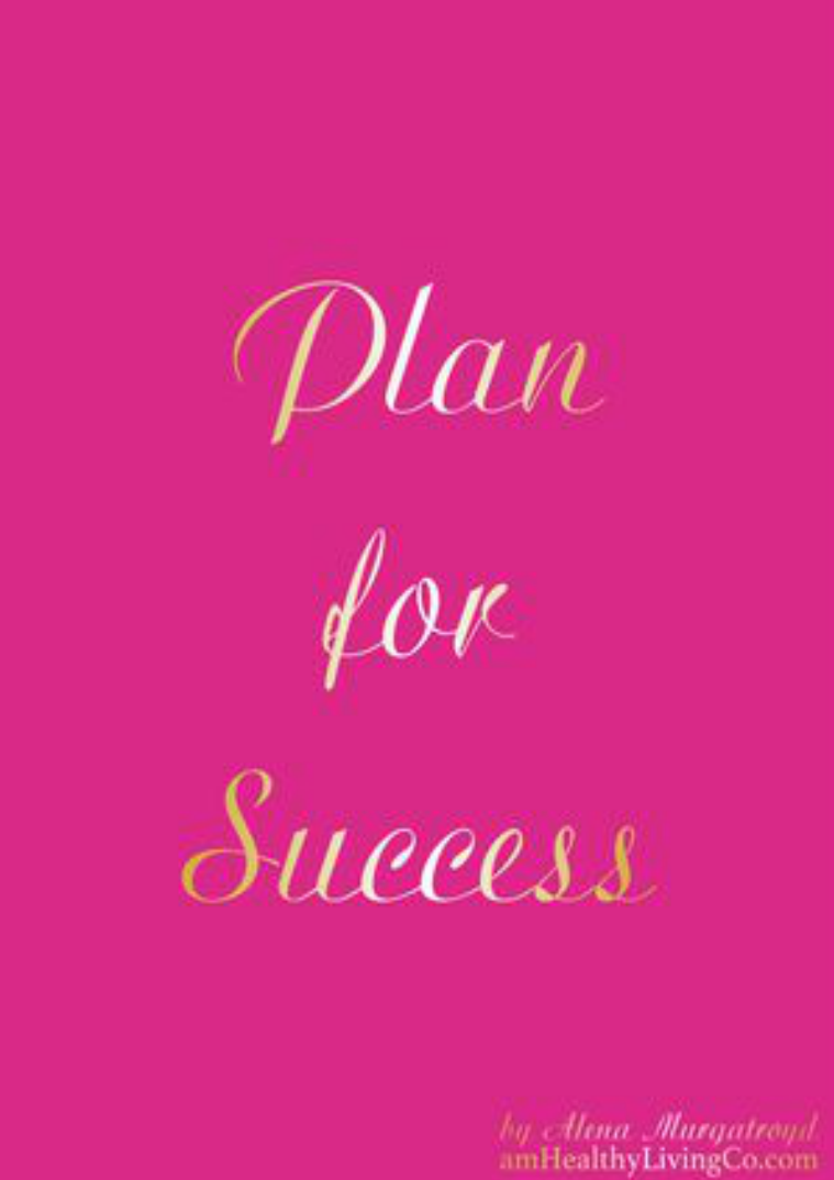 Plan for Success Plan for Success - Raspberry