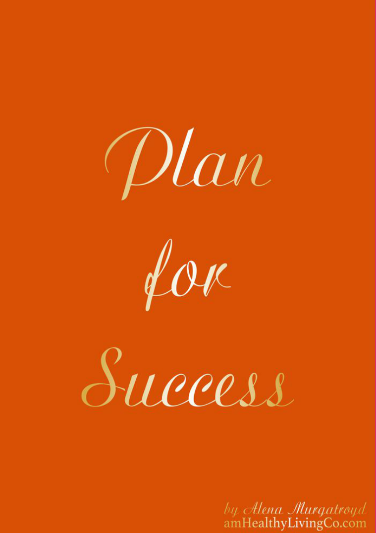 Plan for Success Plan for Success - Spice