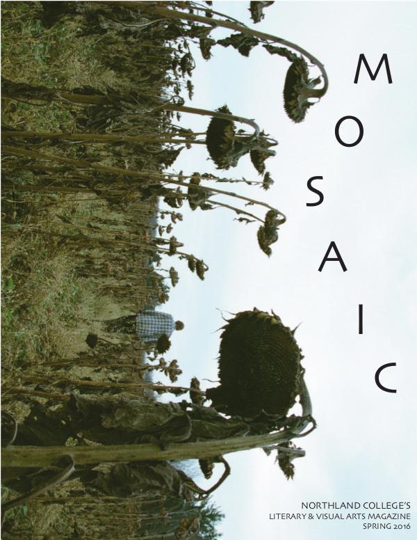 Mosaic Spring 2016