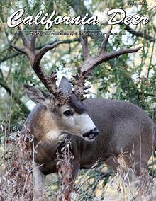 California Deer