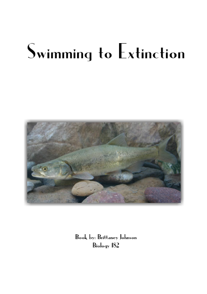 Swimming to Extinction May 2014