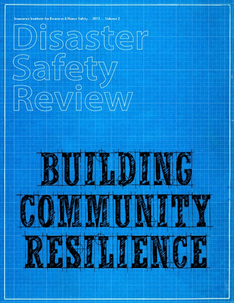 Disaster Safety Review 2013 Vol. 2