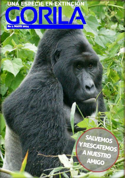 Gorila de Odzala Ronald Mayo