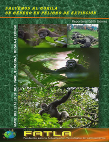 Salvemos al Gorila. Un género en peligro de extinción