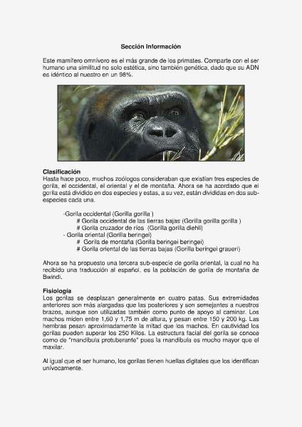 Gorila de ODZALA Mayo 2014