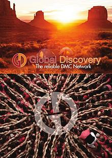 Global Discovery 2017