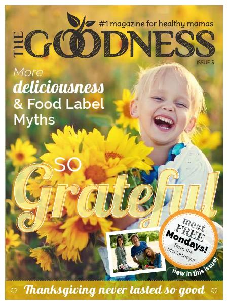 Healthy Mama Magazine Issue 5 - November 2014