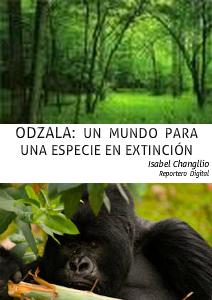 Odzala: un mundo para un especie en extinción Octubre 2012