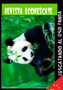 Revista EcoRescate 2