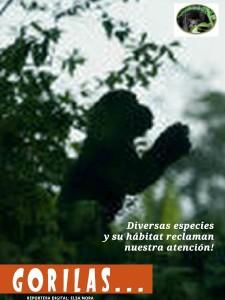 SALVEMOS EL PLANETA... EVITEMOS SU EXTINCIÓN! Edición Especial- Septiembre 2012