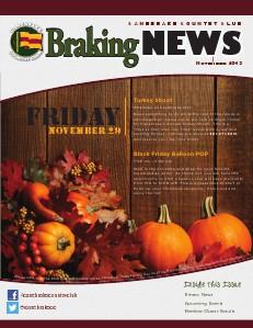 Braking News November 2013