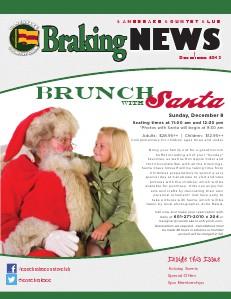 Braking News December 2013