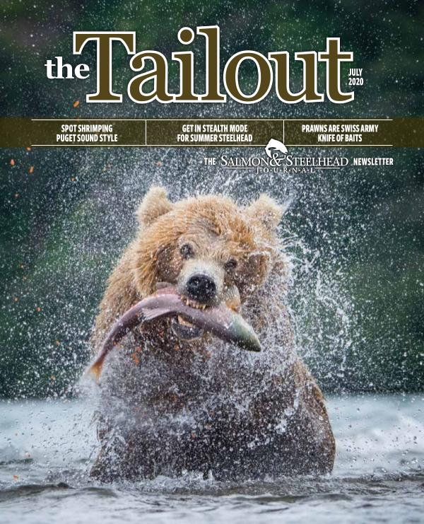 the Tailout July 2020