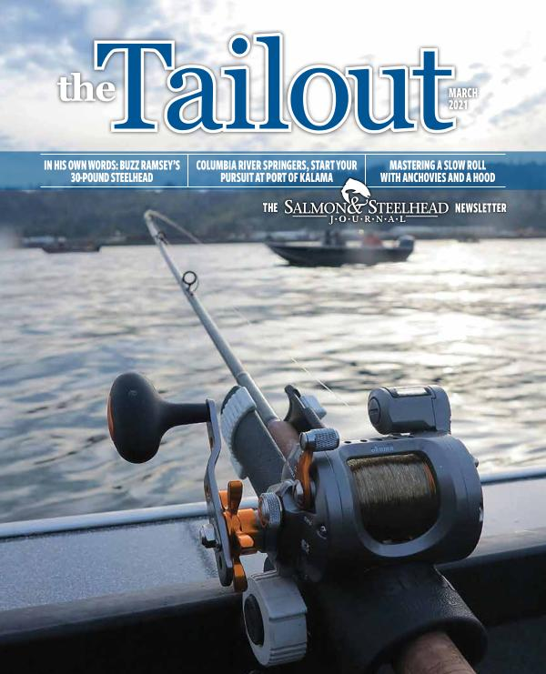 the Tailout March 2021