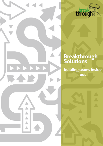 Breakthrough Solutions Volume I