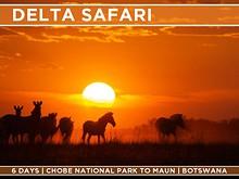 Offroad Camper Safaris
