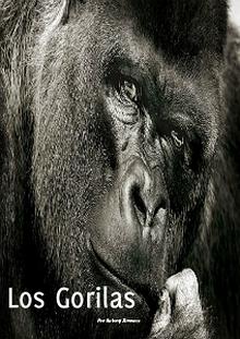 Los Gorilas - La Especie