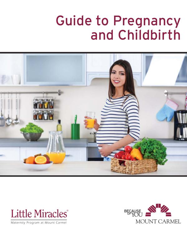 Patient Education Guide to Pregnancy and Childbirth