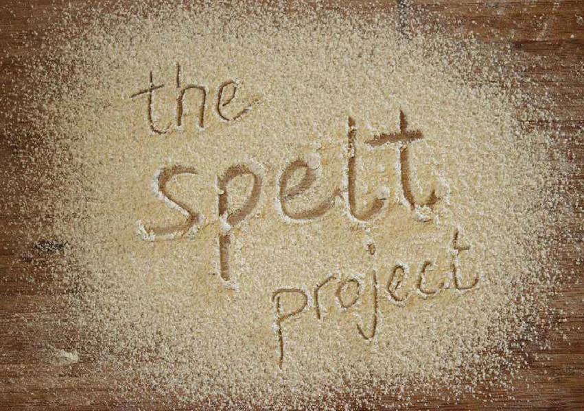 The Spelt Project 1, July 2014