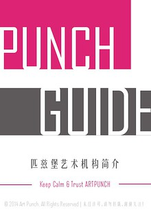 Punch Guide