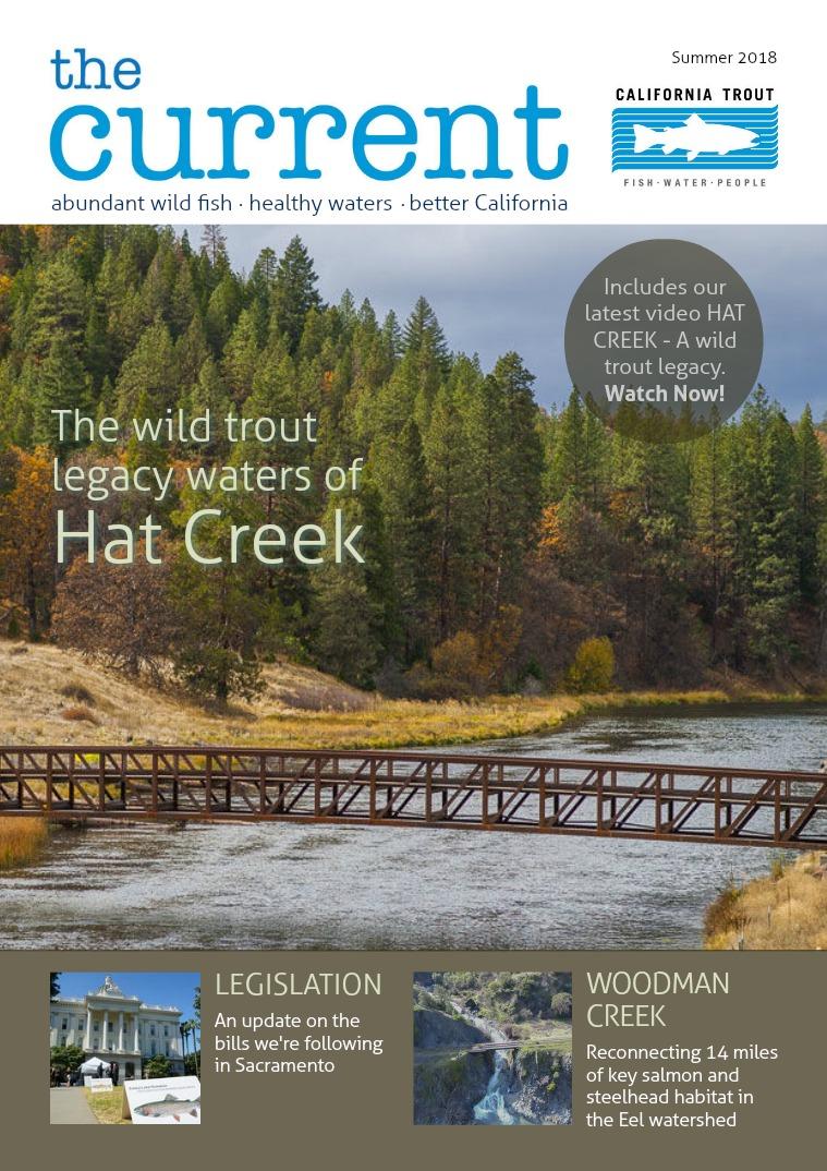The Current Magazine Summer 2018