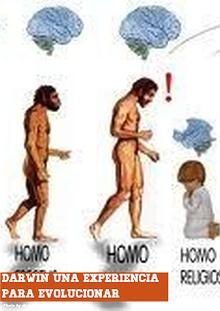 Darwin una experiencia para evolucionar