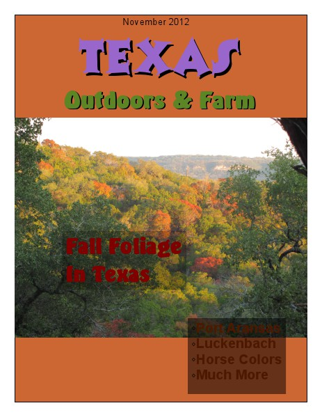 Southwest Highways Texas Outdoors & Farm November 2012