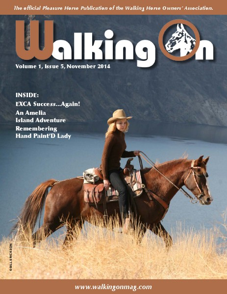 Walking On Volume 1, Issue 5, November, 2014