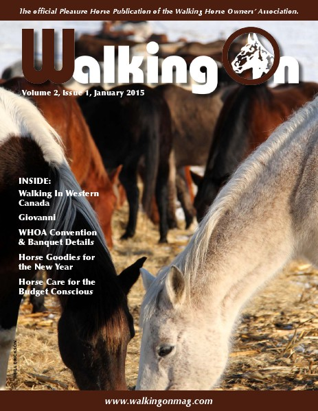 Walking On Volume 2, Issue 1, January 2015