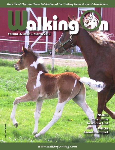 Walking On Volume 2, Issue 3, March 2015