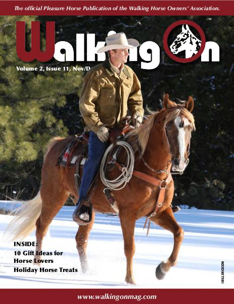 Walking On Volume 2, Issue 11, November/December 2015