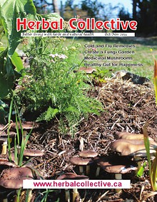 The Herbal Collective