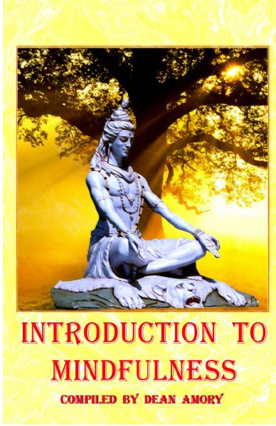 Introduction to Mindfulness_349810_bookemon_ebook.pdf Coaching and Practising Mindfulness