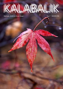 Kalabalık Dergi