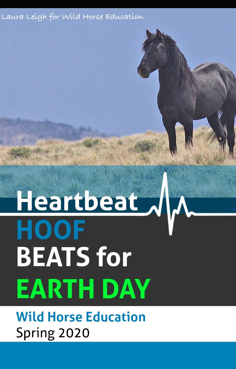 WHE Heartbeat spring/2020 WHE EARTH DAY HEARTBEAT/HOOFBEAT